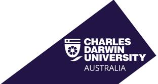 CDU International logo